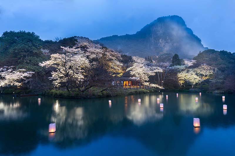 桜_8-01九州_御船山楽園